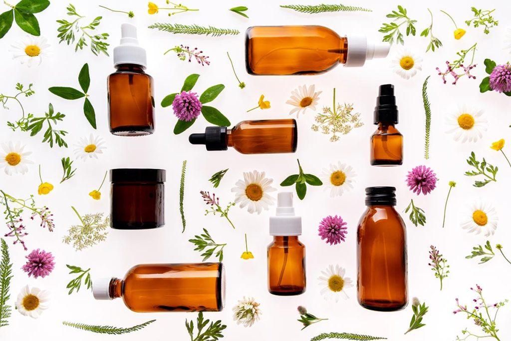 Rośliny kosmetyczne