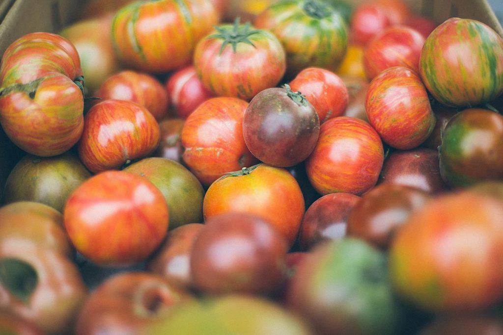 pomidory kolorowe